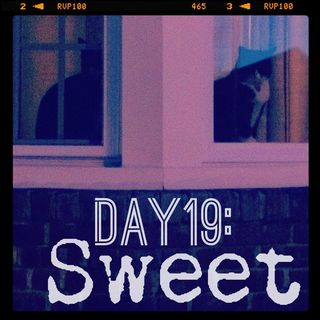 Day_19