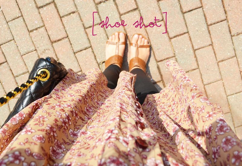 05 shoe shot size