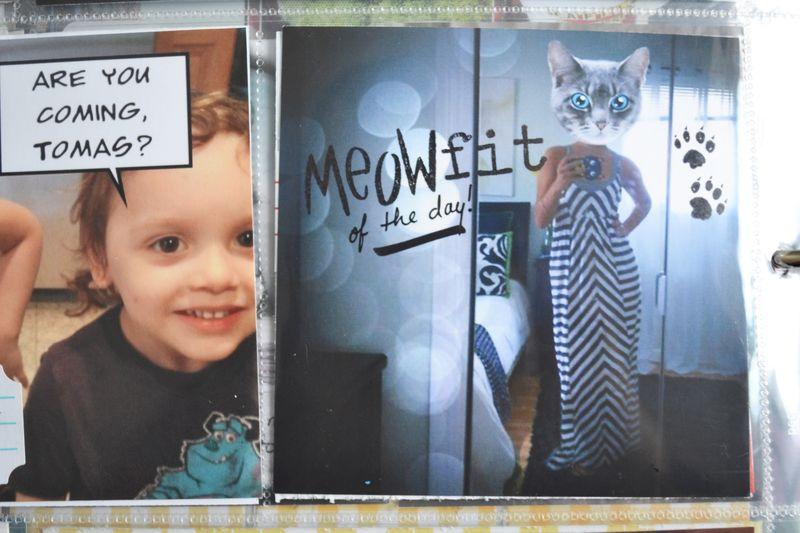 03 week 33 meowfit