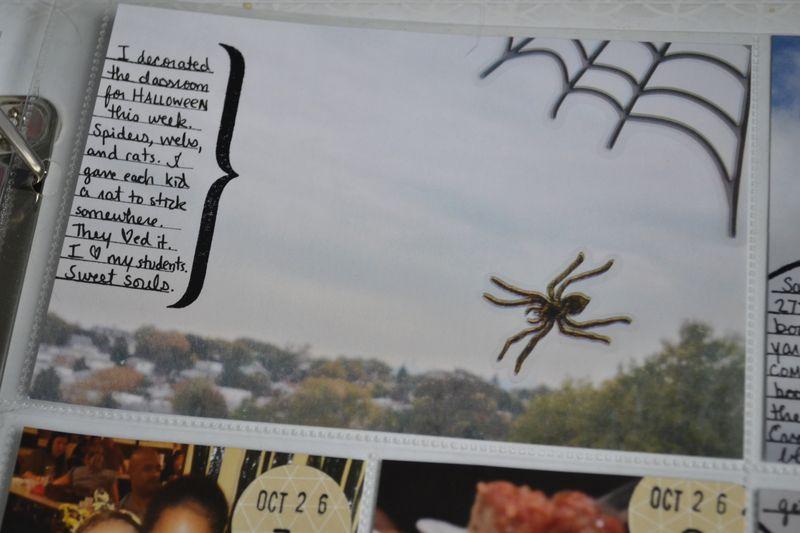 08 spider windiw