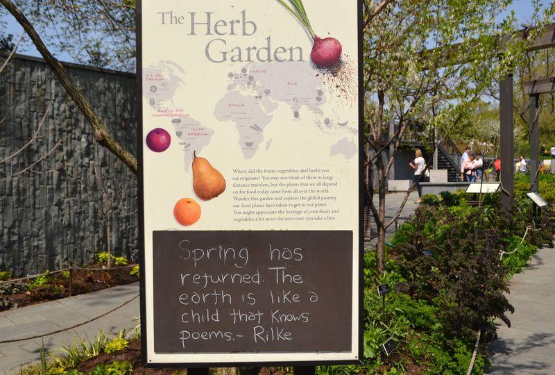 Herb garden 00