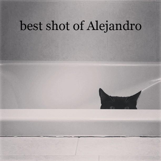 13 best Alejandro
