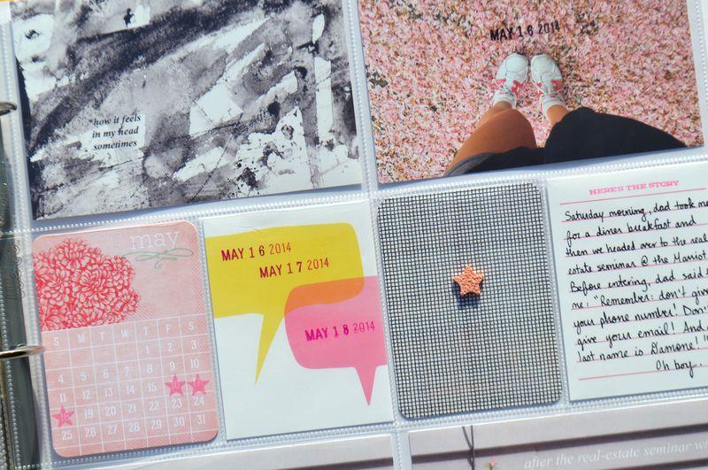 Life Album |weeks 20| 06 | Amanda Rose blog