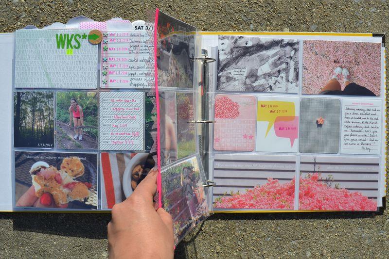 Life Album |weeks 20| 11 | Amanda Rose blog