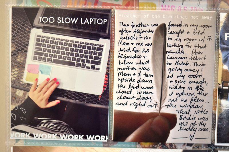PL 2014   weeks 11&12   09   Amanda Rose blog
