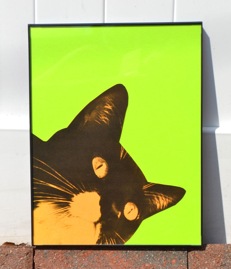 POP ART PET PORTRAIT 02 | Amanda Rose blog