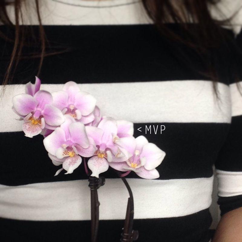 Mini office orchid 02   Amanda Rose blog