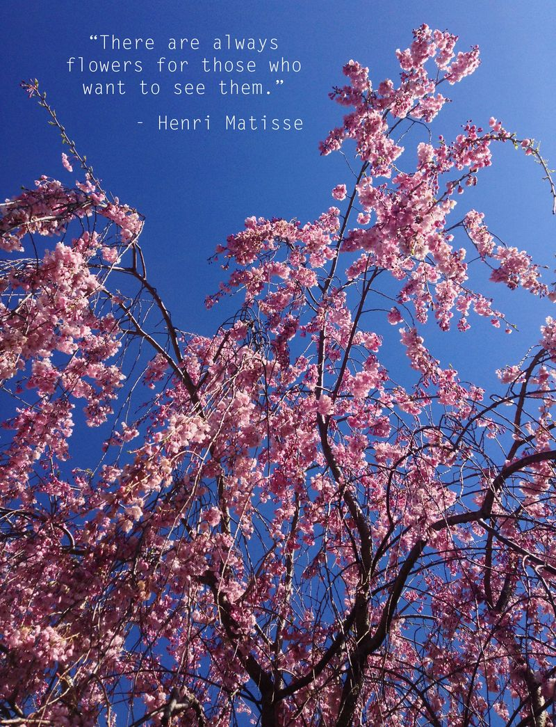 Floral walk pink tree quote