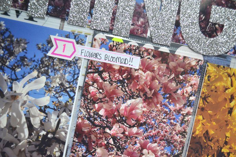 Life Album APRIL 04 | Amanda Rose blog
