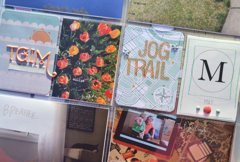 Life Album |weeks 18&19| 01 | Amanda Rose blog