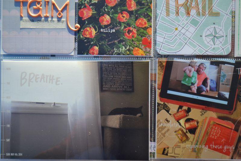 Life Album |weeks 18&19| 05 | Amanda Rose blog