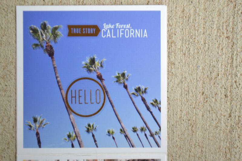 01 mini Cali book   Amanda Rose blog