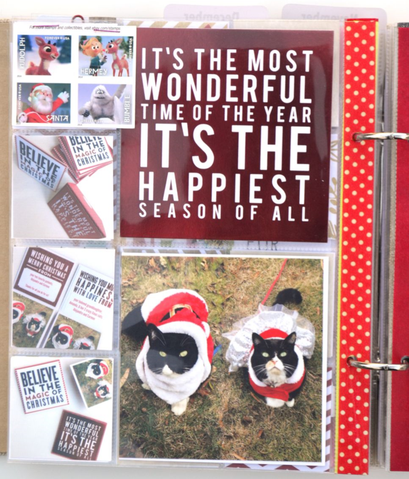 December Daily 2014 // christmas cards | Amanda Rose Zampelli